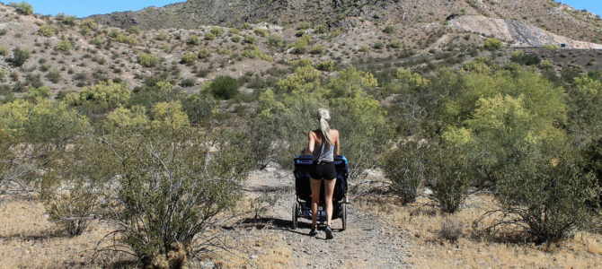 BOB Revolution Flex 3.0 Duallie Jogging Stroller